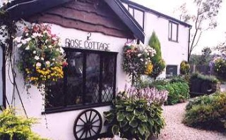 Rose Cottage (Bed and Breakfast)