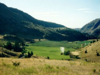 Wilson Ranches Retreat Bed And Breakfast