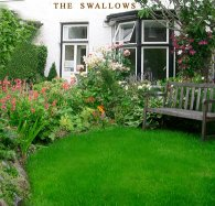 The Swallows (Bed and Breakfast)